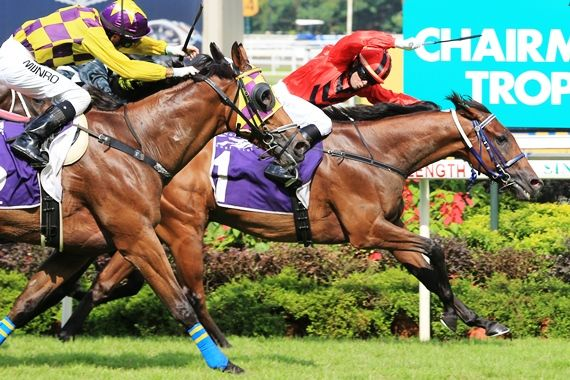 Stepitup (inside wearing saddle cloth No.1) with Manoel Nunes astride, won a tight battle to salute in the