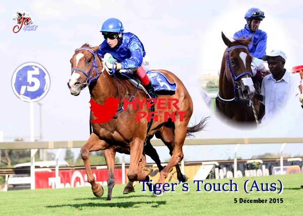 Tiger's Touch