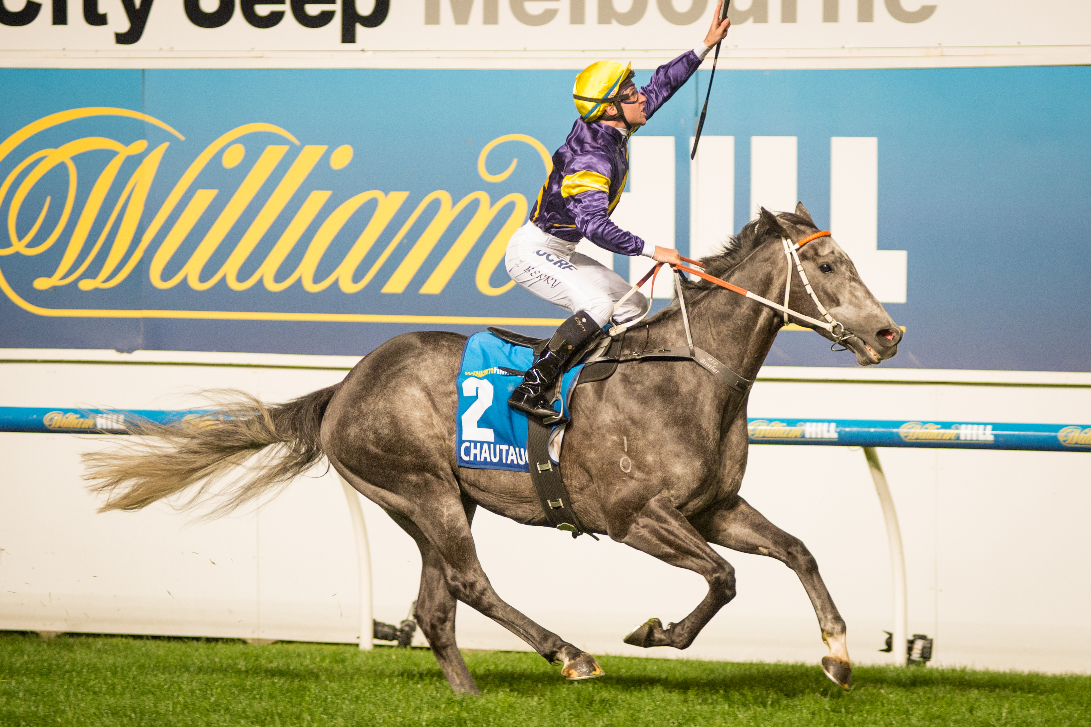 Race 7, Chautauqua, Tommy Berry_23-10-15, Moonee Valley, WIN_0081