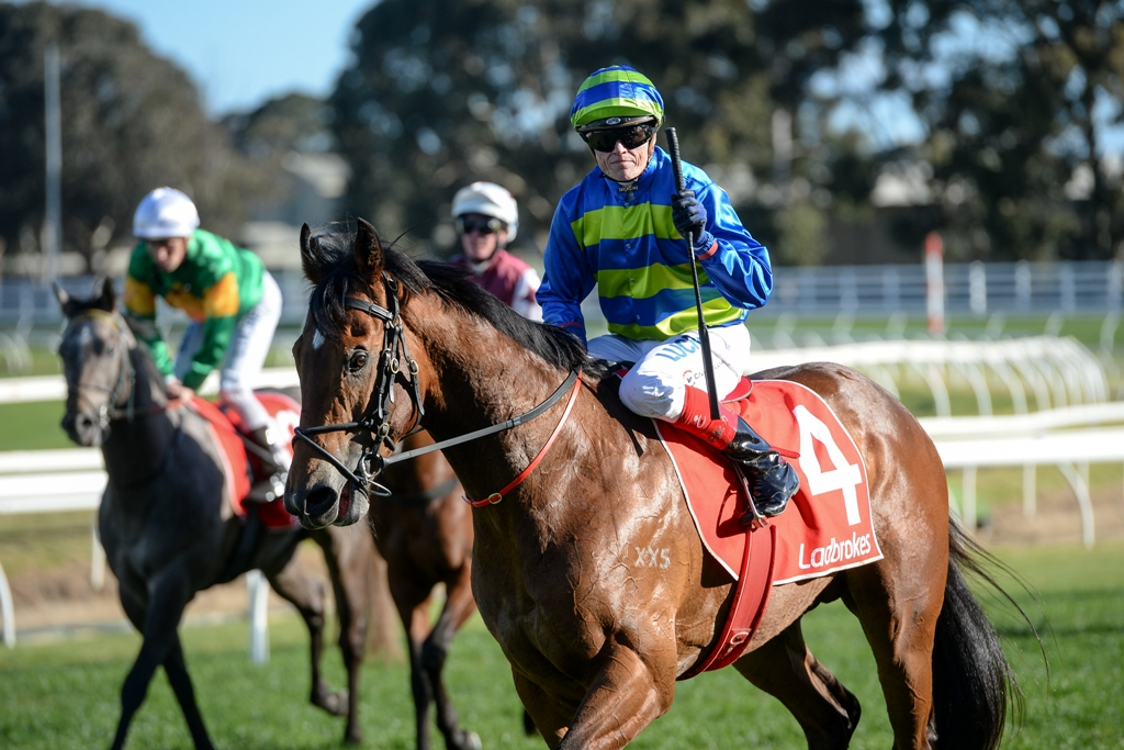Jukebox wins the Vain Stakes