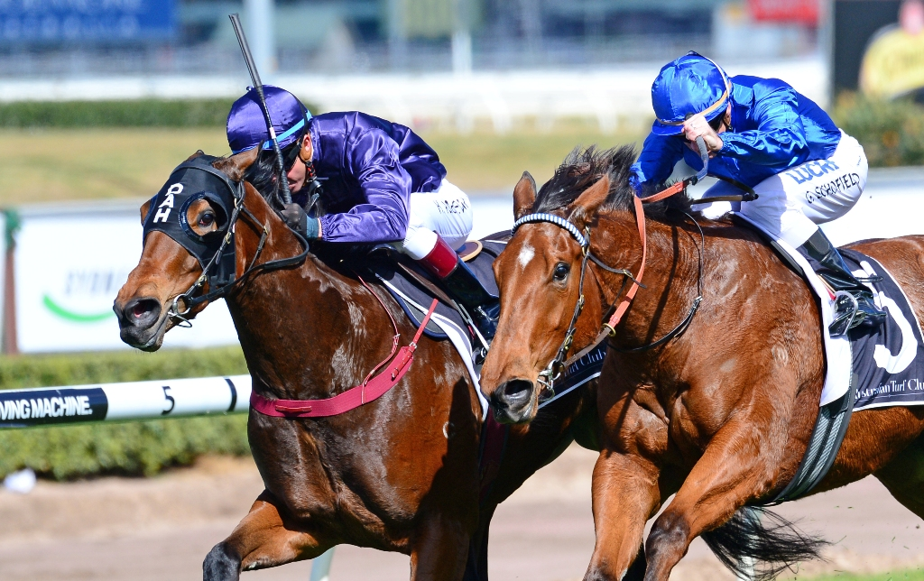 Formailty wins the Silver Shadow Stakes