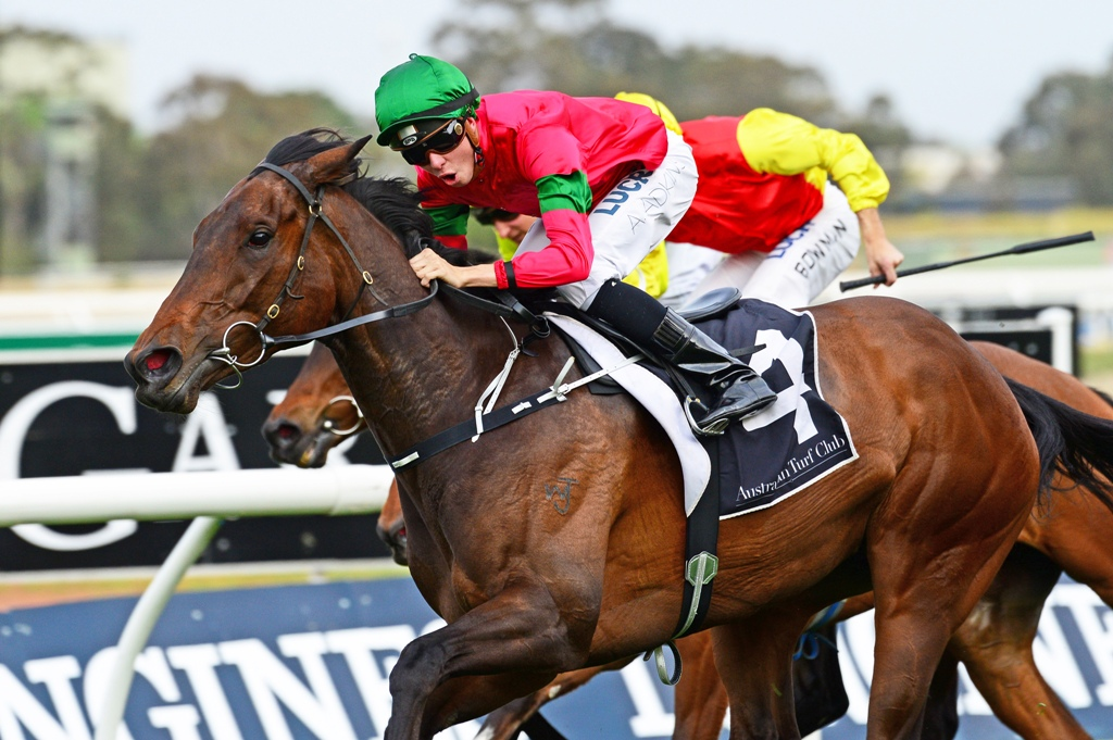 Daysee Doom holds on to win the Group Two Golden Pendant Stakes at Rosehill.