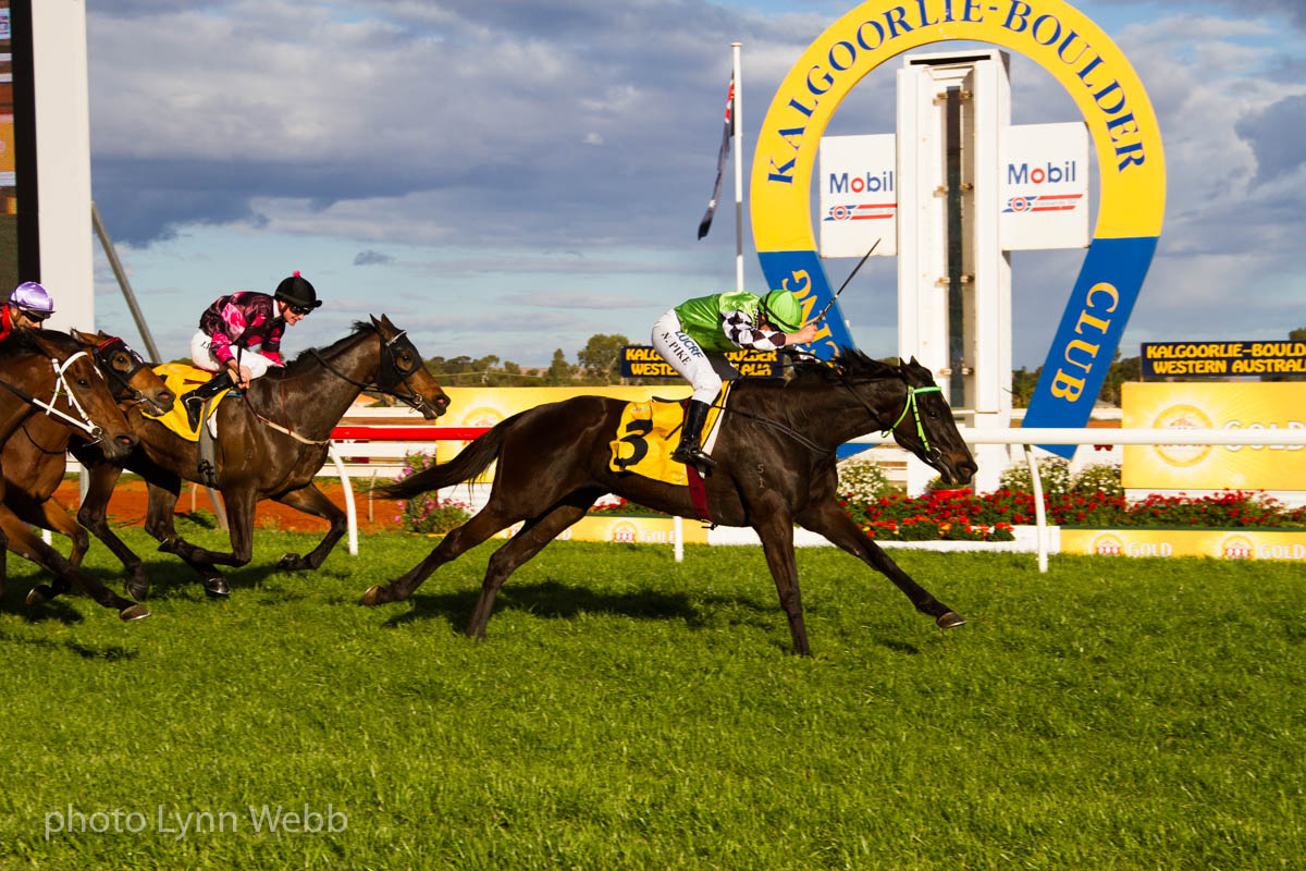 Shinta Mani wins the Listed Kalgoorlie Cup.