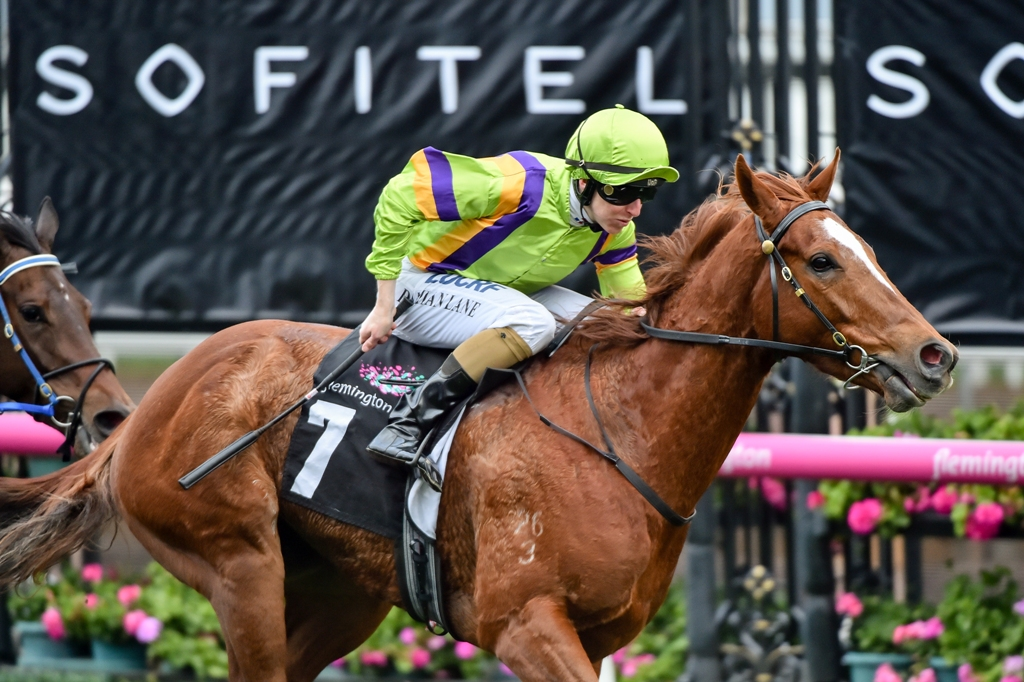 Sword Of Light wins the Group Two Let's Elope Stakes at Flemington.