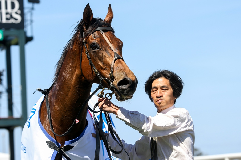 Fast 'N' Rocking pictured with his strapper after winning the Listed Weekend Hussler Stakes.