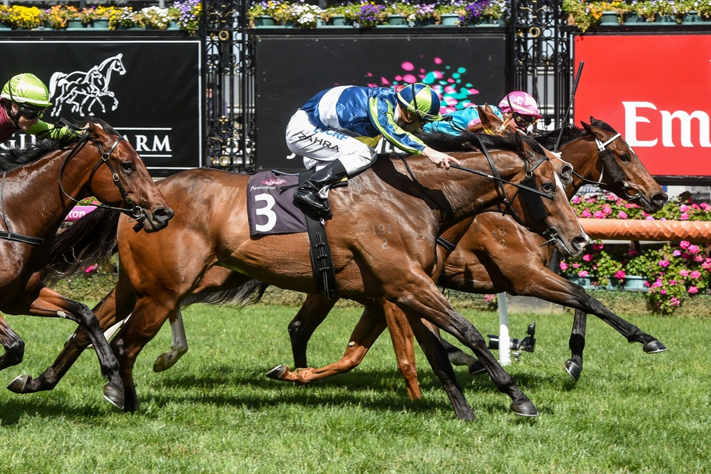 Keen Array wins The Gilgai Stakes.