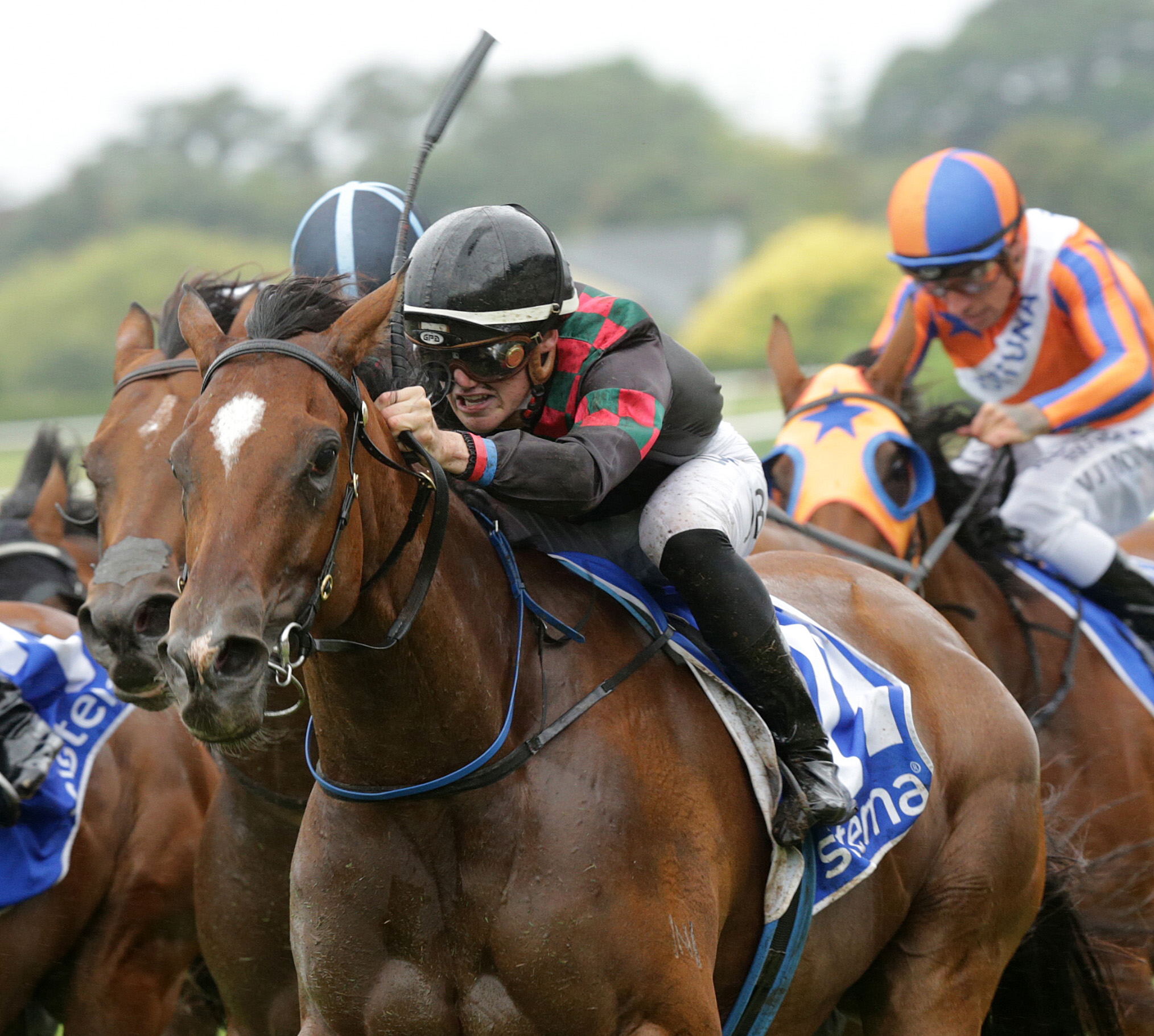 Volpe Veloce takes out the Group One Railway Stakes in New Zealand.