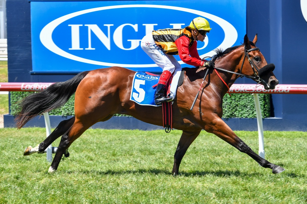 Kinky Boom wins the $250,000 Inglis Premier at Caulfield on debut.
