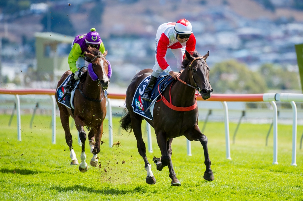 Mystic Journey wins the Listed Elwick Stakes in Tasmania.
