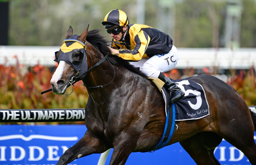 Trapeze Artist wins the Group Two Expressway Stakes.