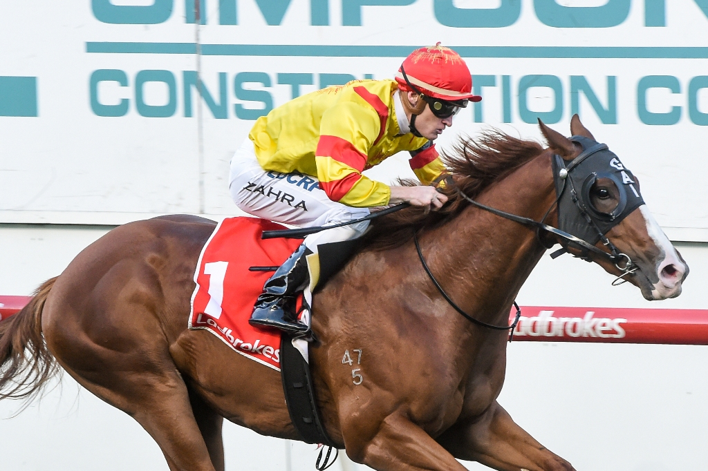 Chess Star wins the Valley Pearl.