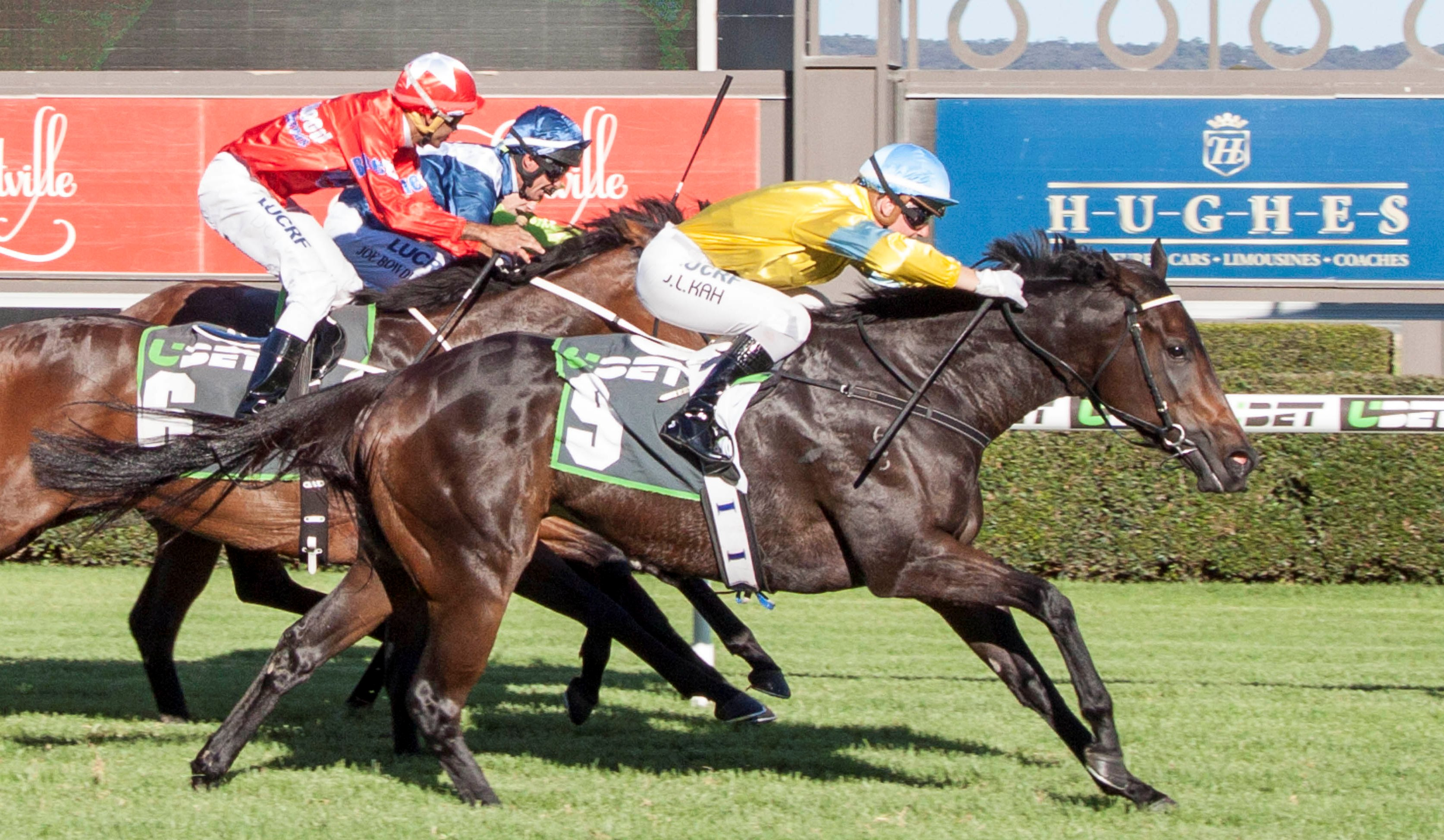 Dainty Tess wins the RN Irwin Stakes at Morphettville