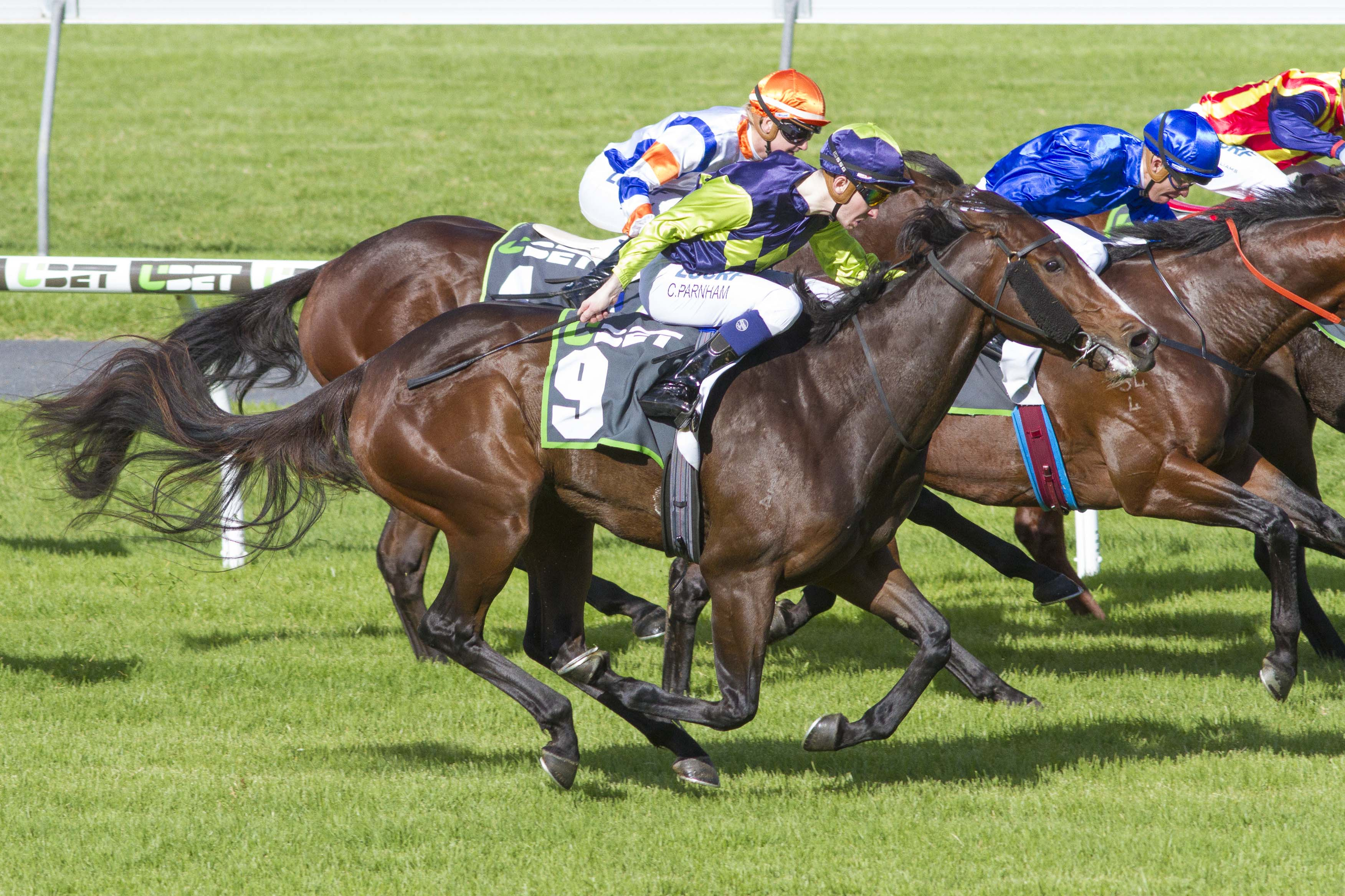 I'll Have A Bit wins the Euclase Stakes (Atkins Photography)