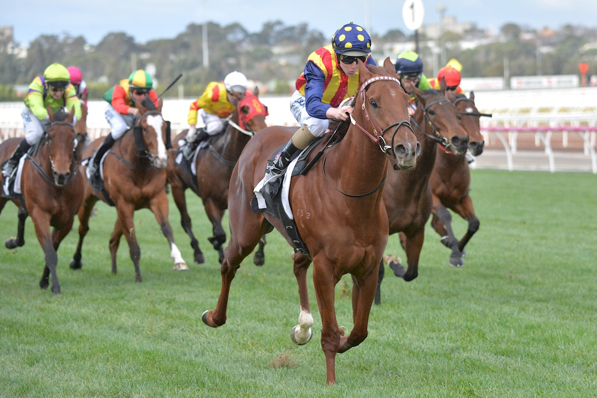 Nature Strip ridden by Damian Lane wins the A.R. Creswick Series Final at Flemington