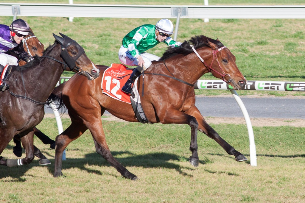 Holy Blade wins the Listed WH Wylie Handicap