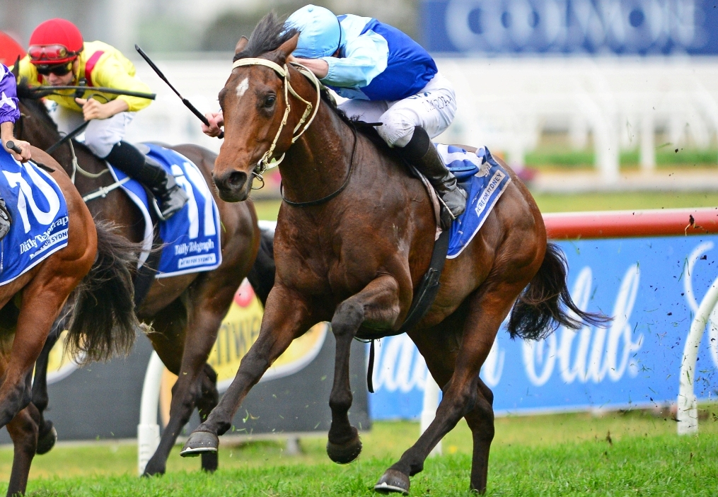 Tarka wins the Stan Fox Stakes