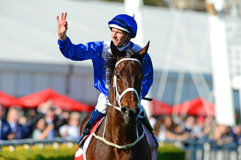 Winx returns to scale after winning the Group One George Main Stakes.