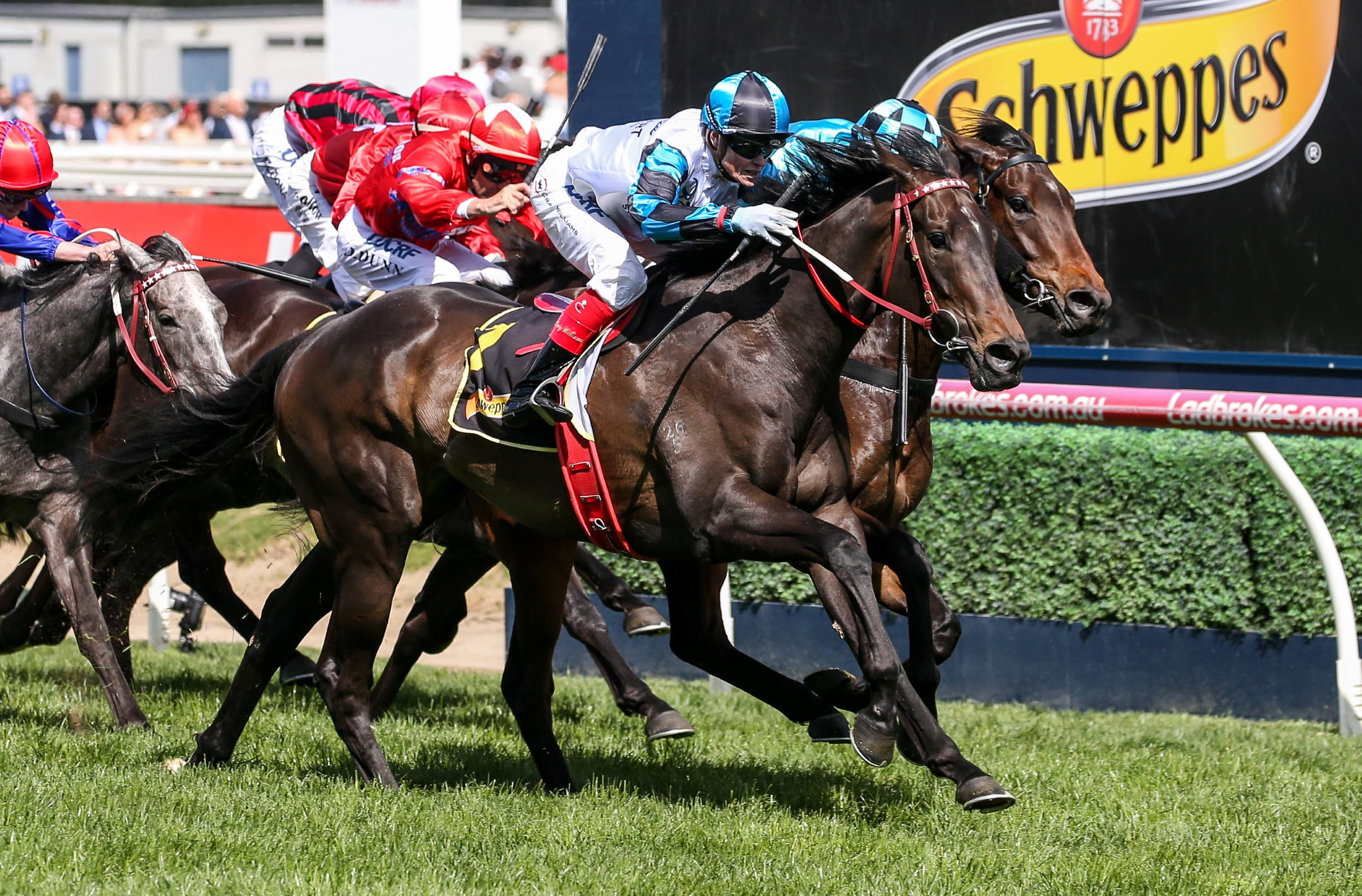 Amphitrite Wins The Group One Schweppes Thousand Guineas