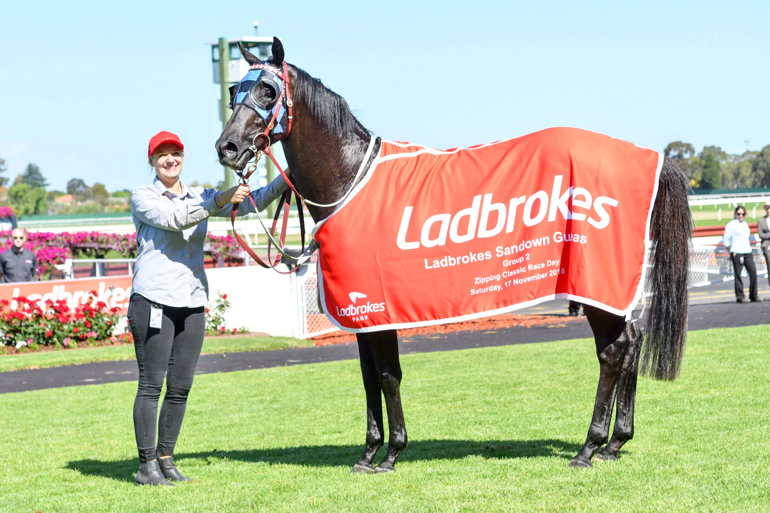 Ringerdingding and strapper after successful win in the Group Two Ladbrokes Sandown Guineas