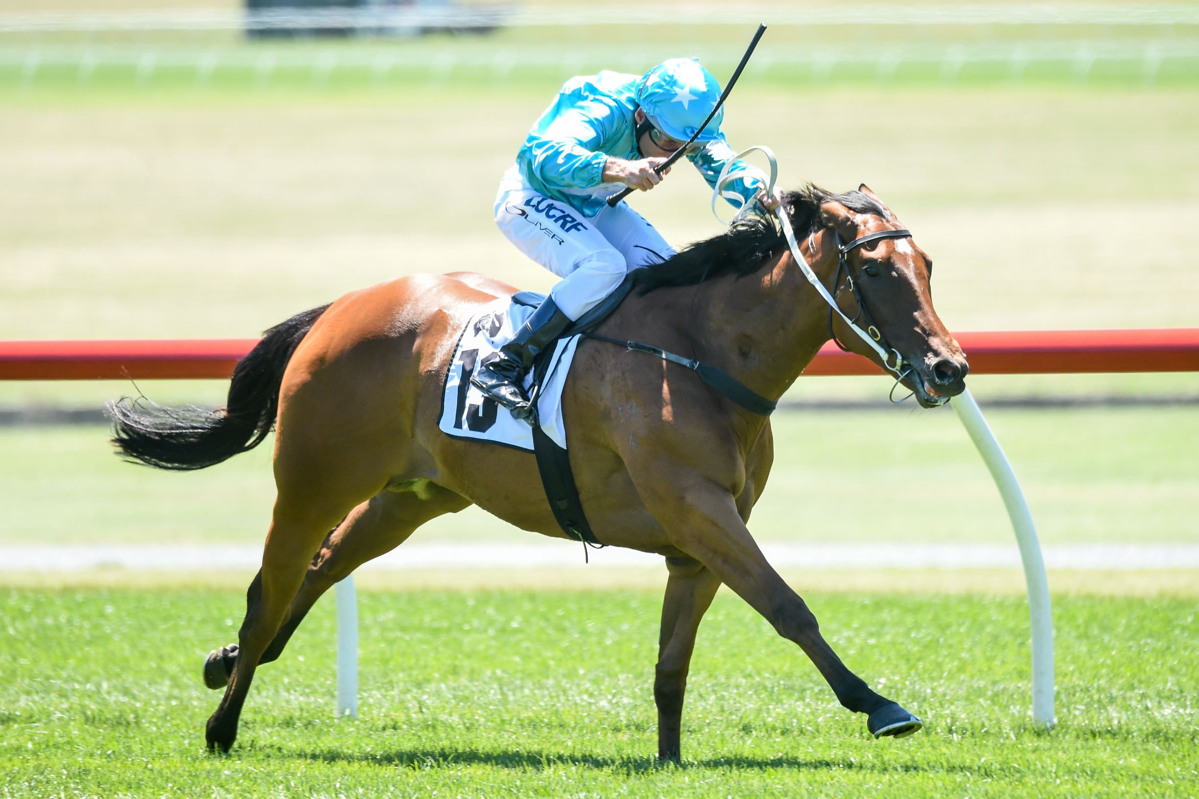 Steal My Kisses storms home to win the Listed Thoroughbred Club Merson Cooper Stakes