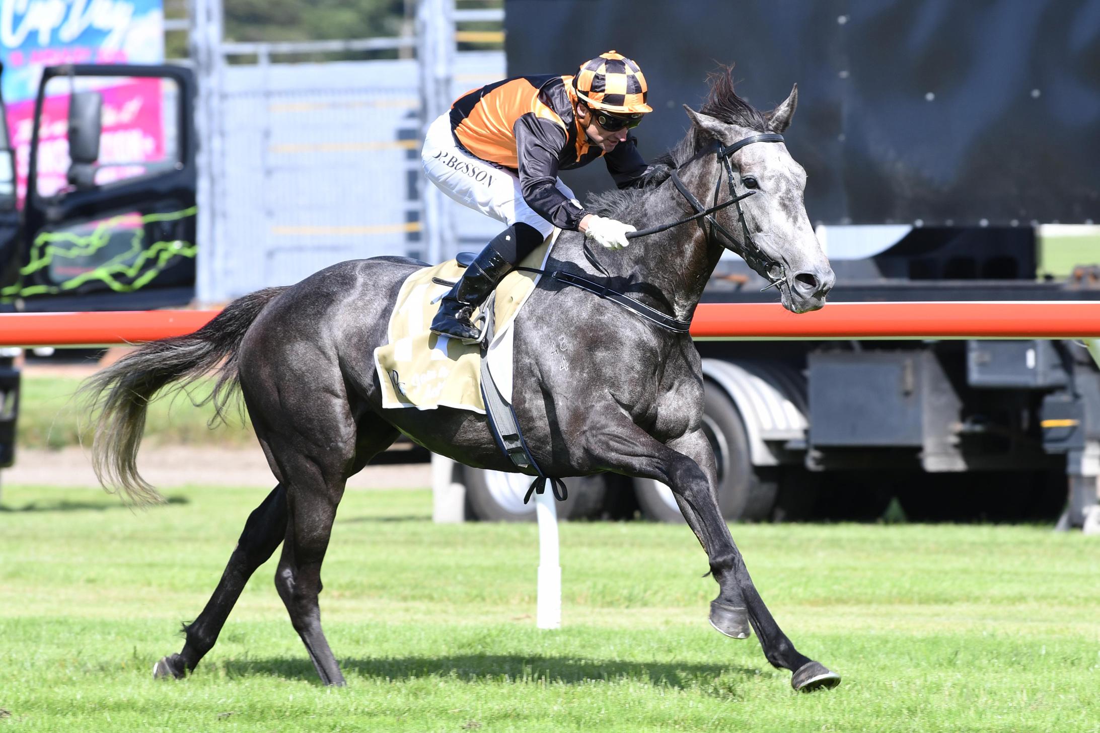 Danzdanzdance wins the Group 1 Captain Cook Stakes