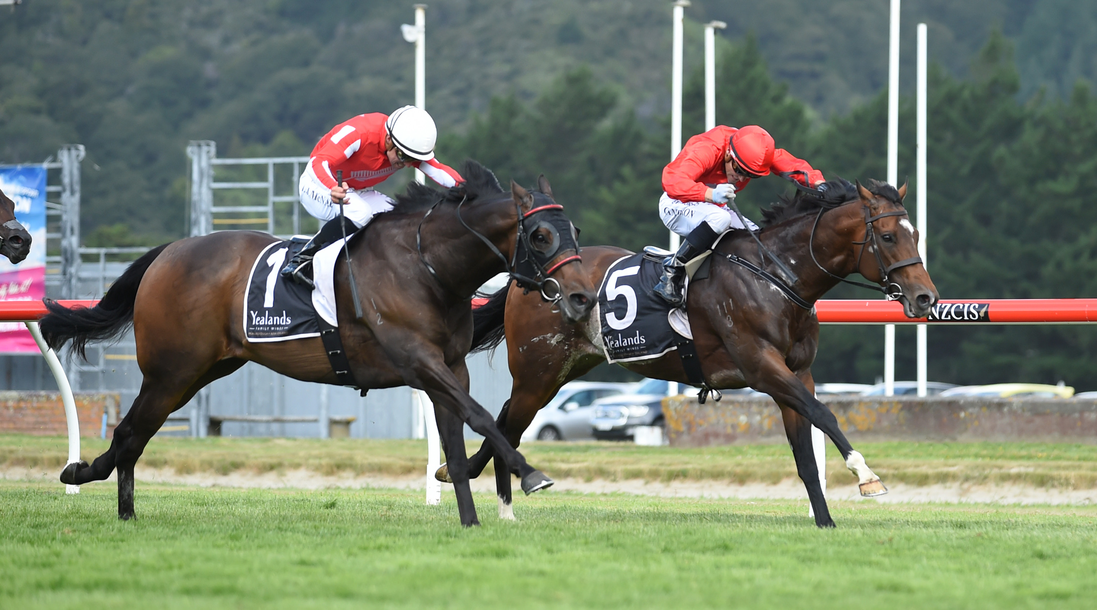 Enzo's Lad and Ferrando fight it out in the Group One Telegraph Handicap