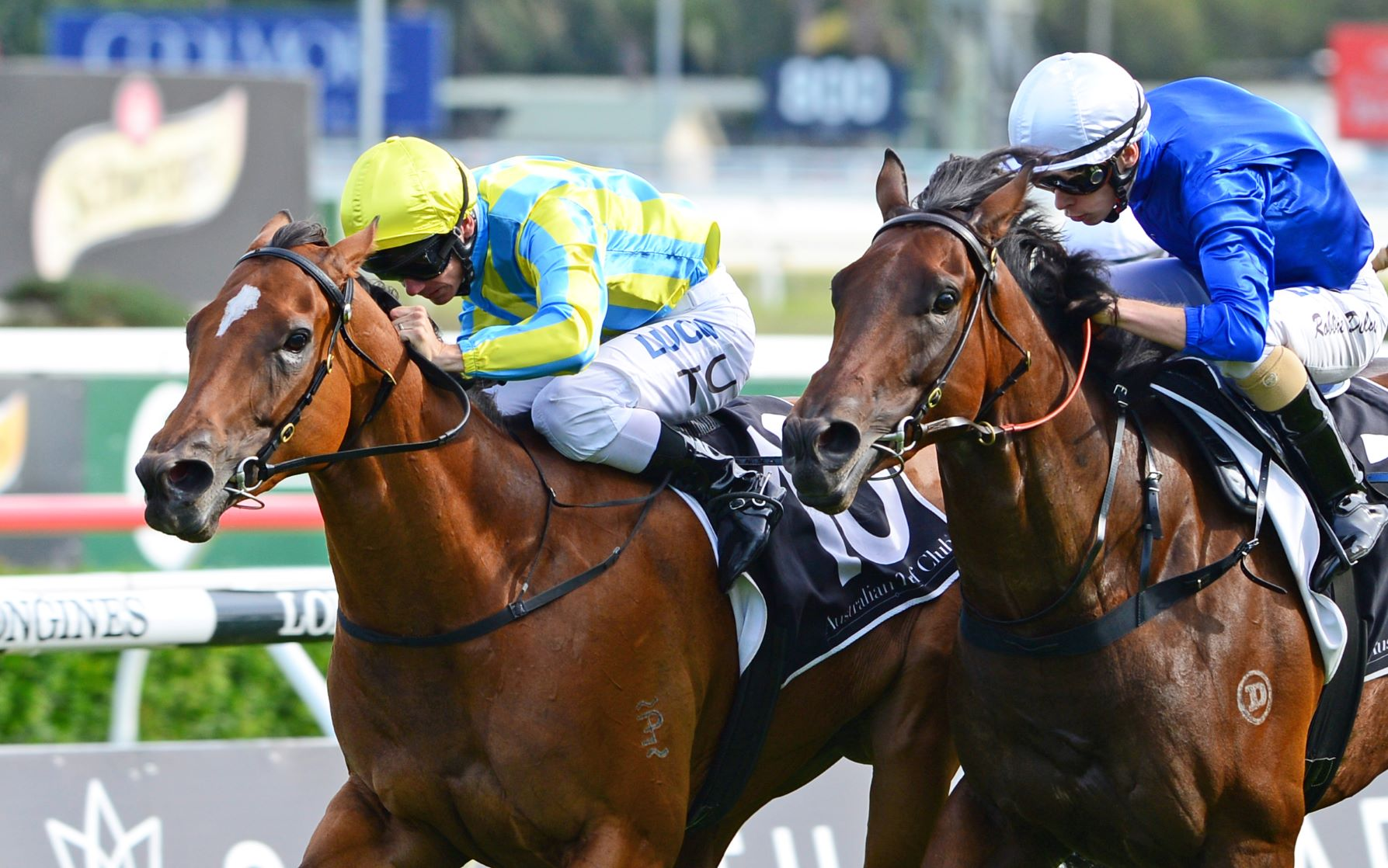 Alassio fights off Manicure to win the Triscay Stakes