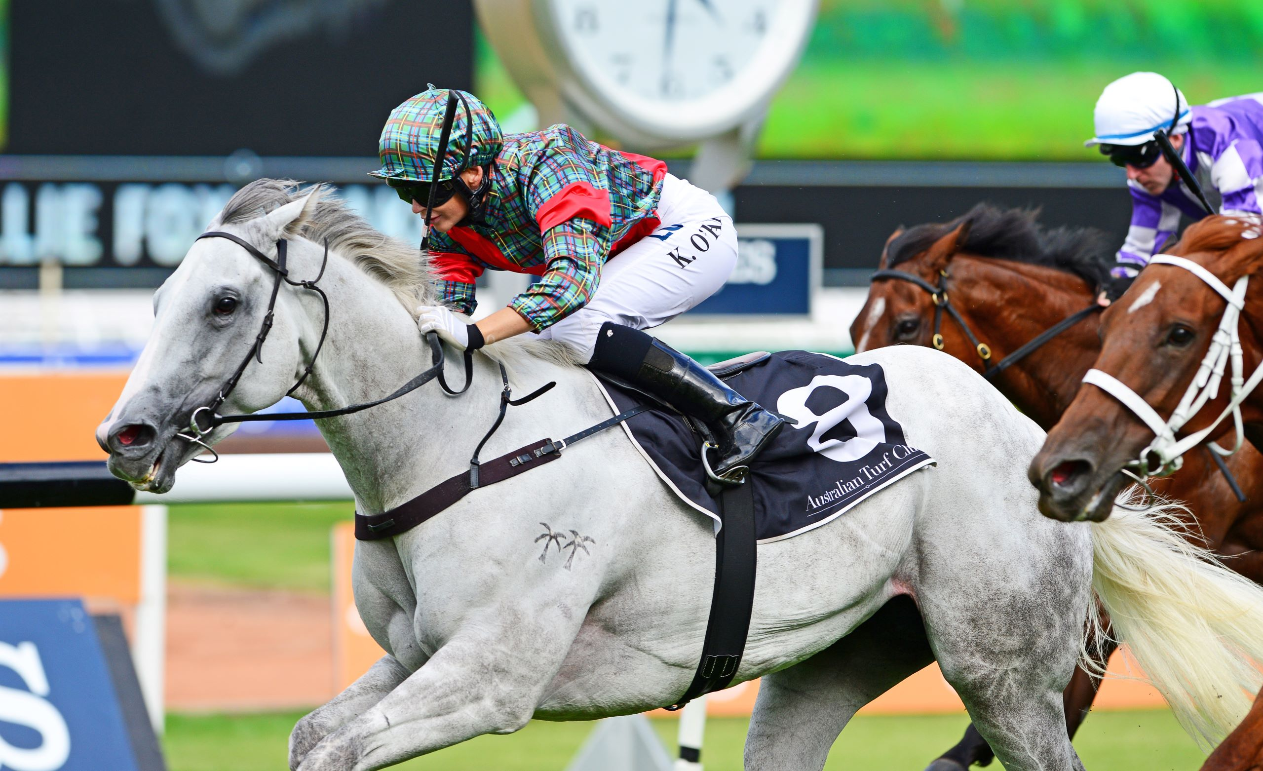 White Moss wins Group Two Millie Fox Stakes