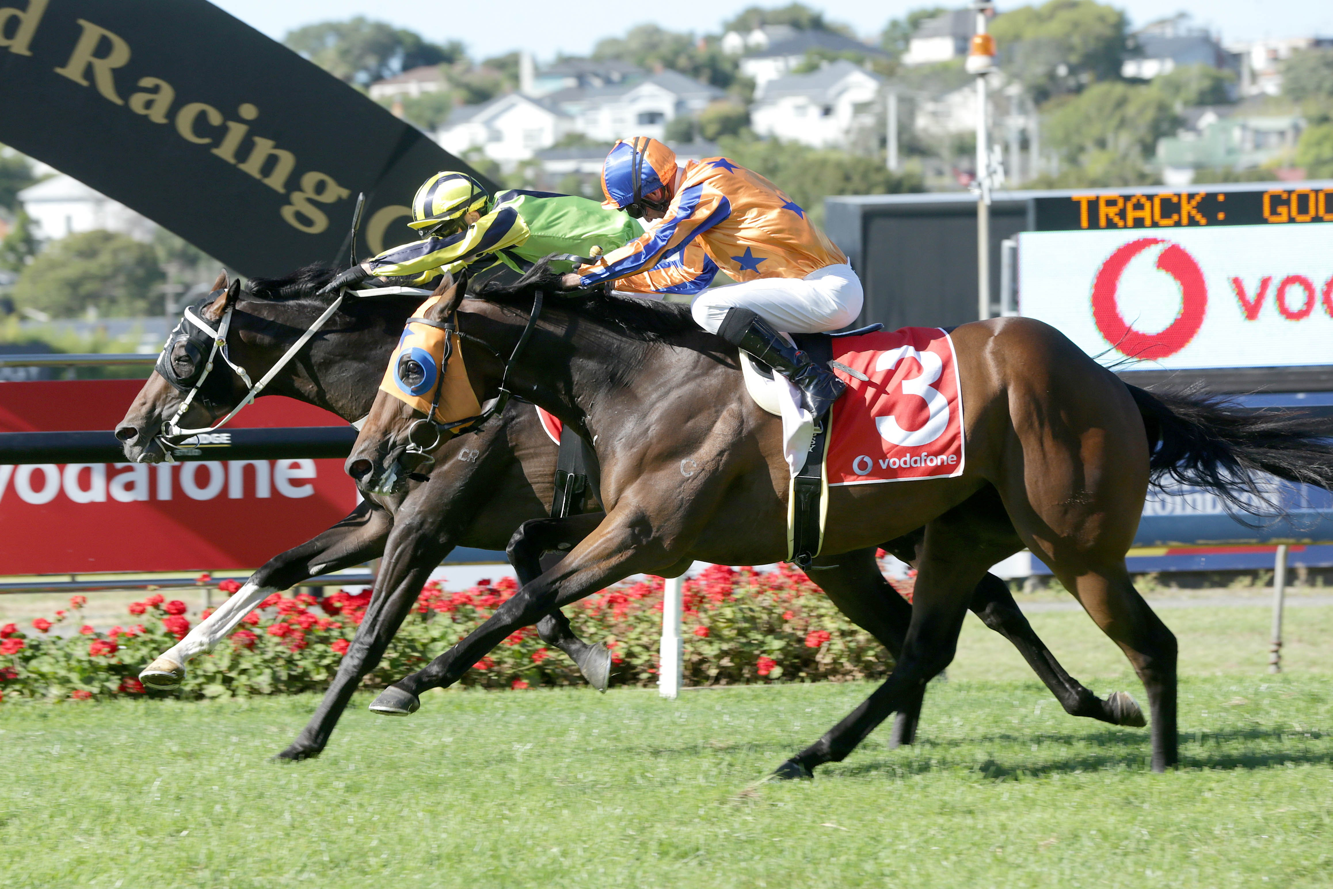 Crown Prosecutor wins the Group One New Zealand Derby