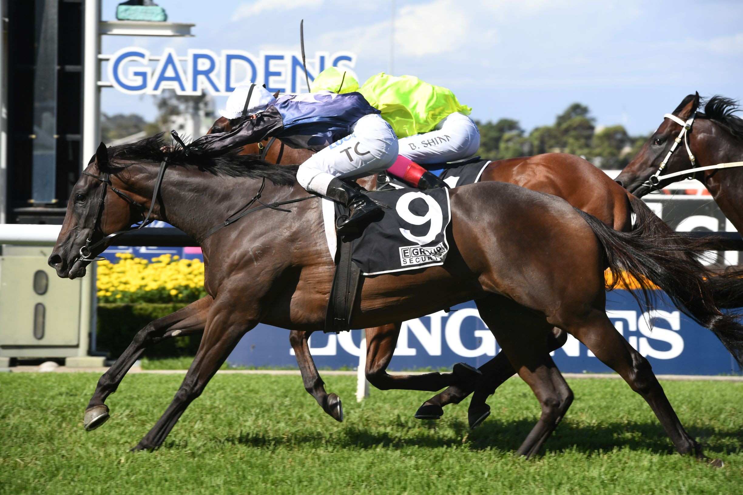 Siren's Fury wins the Group Three E-Group Security Star Kingdom Stakes