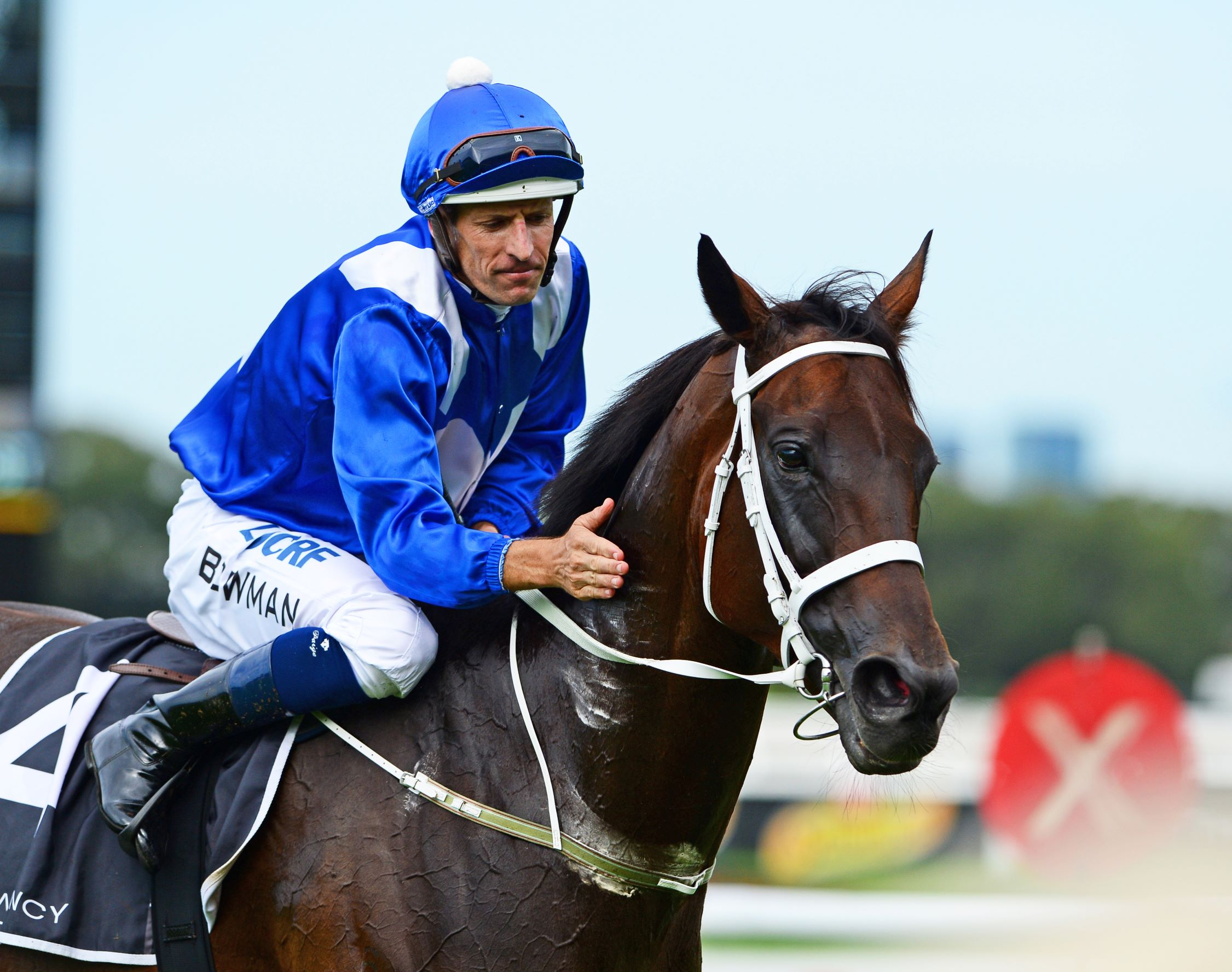 Winx after winning her fourth consecutive George Ryder Stakes