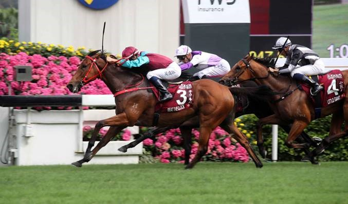 Beat The Clock wins the Group One Chairman's Sprint Prize