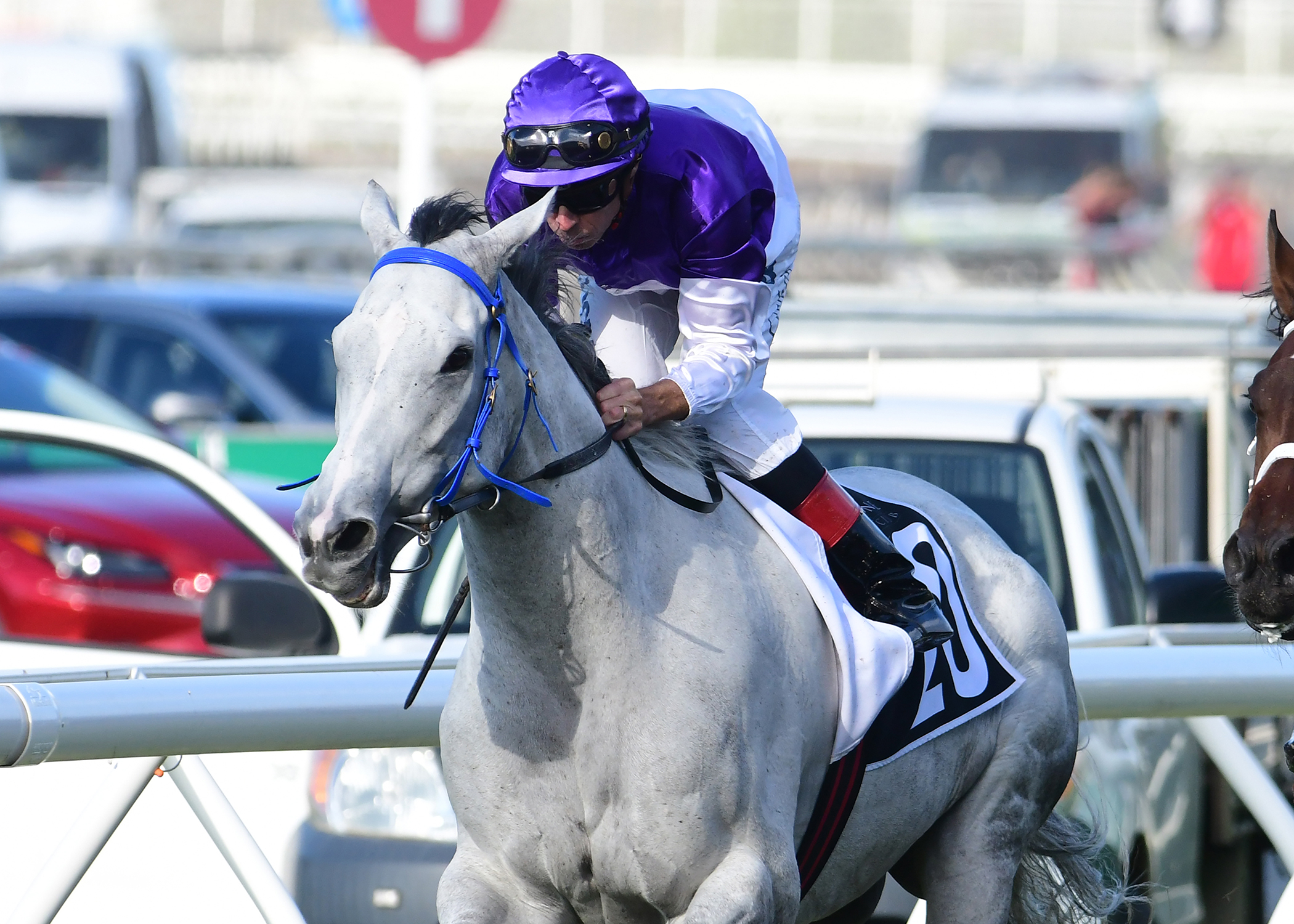 The Candy Man wins the Group Three Premier's Cup