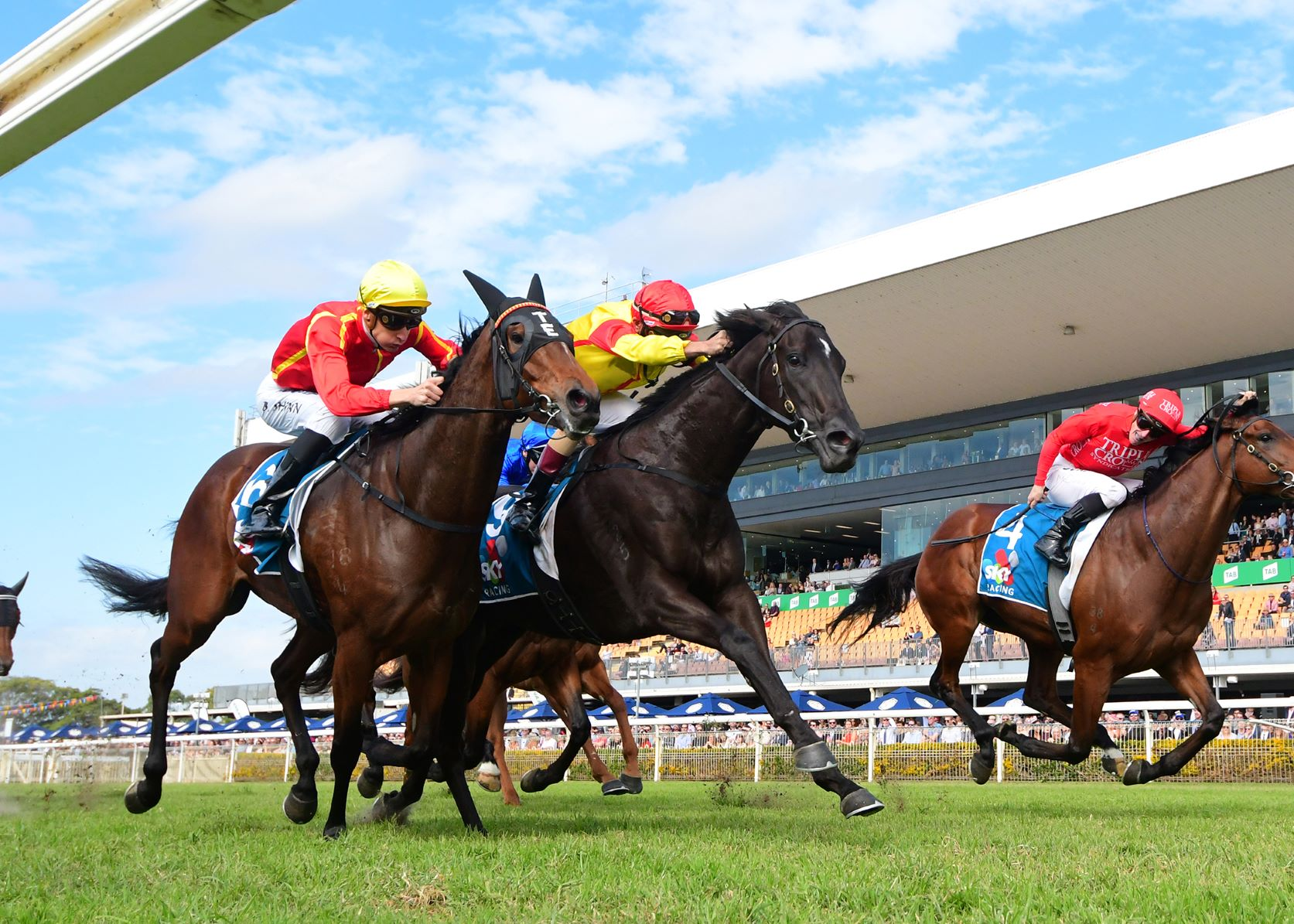 Pretty In Pink edges out Winter Bride and Brave Song in the Group Two Moreton Cup