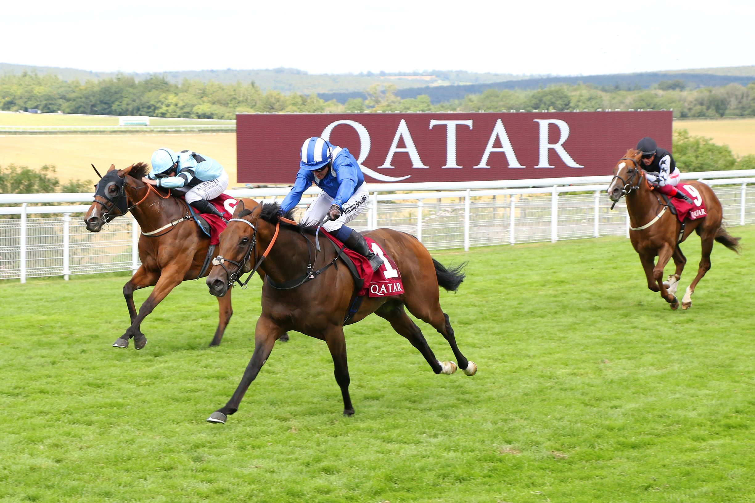 Houtzen runs second in the Group Two King George Qatar Stakes at Goodwood